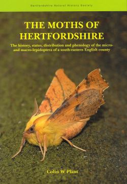 The Moths of Hertfordshire